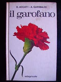 Elena Accati 1974 - IL GAROFANO