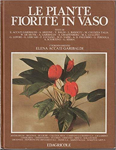 Elena Accati - PIANTE FIORITE IN VASO