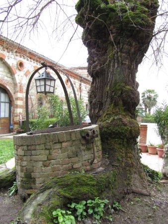 il POZZALBERO del Castello di Frassinello